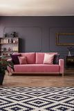Pink velvet couch with cushions standing in the middle of dark g. Rey living room interior with molding on the wall and geometric carpet royalty free stock image