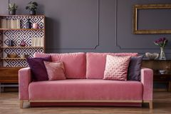 Pink velvet couch with decorative pillows standing in grey livin. G room interior with vintage cupboard, fresh plants and molding on the wall stock photos
