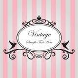 Pink vintage frame Royalty Free Stock Image