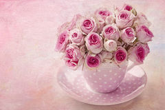 Free Pink Vintage Rose Stock Photography - 25214852