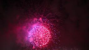Pink Violet Fireworks Sydney stock video footage