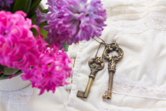 Pink and violet hyacinths Royalty Free Stock Photo
