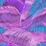Pink and violet leaves palm tree on dark background. Beautiful seamless tropical floral pattern background. Vector royalty free stock images