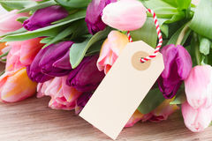 Pink and violet tulips with empty tag Royalty Free Stock Photos