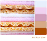 Pink wafer palette Royalty Free Stock Image