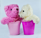 Pink water bucket and cute white/wjite bear Royalty Free Stock Images