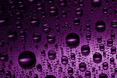 Pink water drops. Against black background Stock Photo