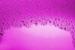 Pink water drops Stock Photos