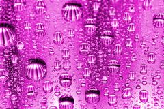 Pink water drops Stock Photo