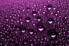 Pink water drops. Against black background Royalty Free Stock Photography