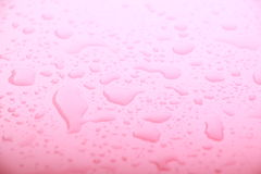 Pink water drops royalty free stock images