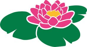 Pink water lily. Flower blossom vector Stock Image