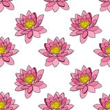 Pink water lily, seamless pattern Stock Photos