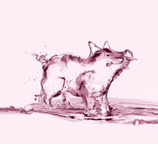 Pink Water Pig Stock Photos
