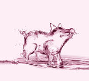 Pink Water Pig Royalty Free Stock Images