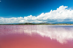 Pink water salt lake in Dominican Republic Stock Photo