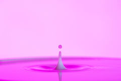 Pink water splash Stock Image