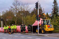 Pink water tube against the storm Ingolf. In Frederikssund, Denmark, October 29, 2017 royalty free stock image