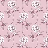 Pink watercolor floral seamless pattern. Hand drawn flowers, monochrome seamless background Stock Image