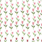 Pink watercolor hand drawn flower tulip seamless Royalty Free Stock Photography