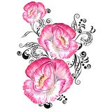 Pink watercolor poppys stock images