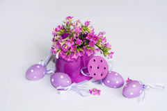 Pink watering can filled with purple  eggs Stock Photos