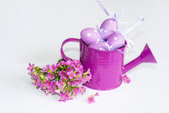 Pink watering can filled with purple  eggs Royalty Free Stock Photo