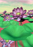 Pink waterlilies and lotus flowers - 3D render Royalty Free Stock Photos