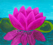 Pink waterlily, oil painting Stock Images