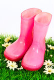 Pink wellingtons Stock Photography