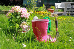 Pink wellingtons in the Spring garden Royalty Free Stock Images