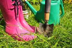 Pink wellingtons in the Spring garden Royalty Free Stock Image