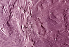 Pink wet paint texture. Stock Photography