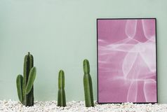 Pink and White Abstract Painting Near Green Cactus Royalty Free Stock Image