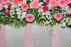Pink and white backdrop flowers arrangement Stock Images