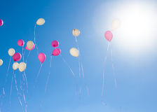 Pink and white balloons flying in the sky Stock Photos