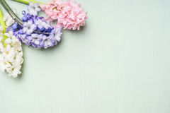 Pink,white and blue hyacinths flowers bunch on  on light shabby chic background, top view Stock Photography