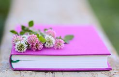 Pink and white clover on the fuchsia book. Pink and white clover on the book Stock Images