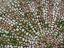 Pink and white cobbled flooring mosaic with pattern. Royalty Free Stock Photo