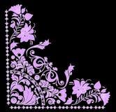 Pink and white corner on black Stock Image