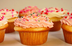 Pink and white cupcakes. Pink and white frosted cupcakes with sprinkles Stock Photography