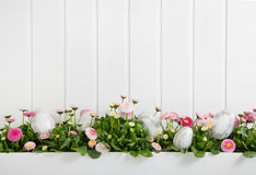 Pink and white daisy flowers with easter eggs for decoration on. Wooden shabby chic background Royalty Free Stock Images