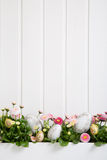 Pink and white daisy flowers with easter eggs for decoration on Royalty Free Stock Photo