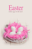 Pink and white Easter Royalty Free Stock Image