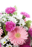 Pink and White Flowers Royalty Free Stock Photo