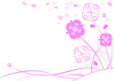 Pink and white flowers vector illustration