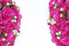 Pink and white flowers border with empty space. Photo stock image
