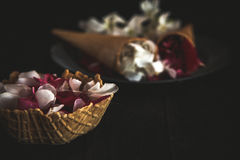 Pink and white flowers in ice cream cone on black background Royalty Free Stock Photography