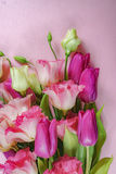 Pink and white flowers on light green background, greeting card concept Royalty Free Stock Images