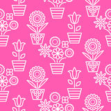 Pink and white line flower pots seamless vector. Stock Image